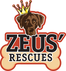 Zuses Pets